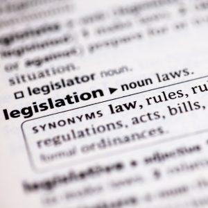 definition of legislation