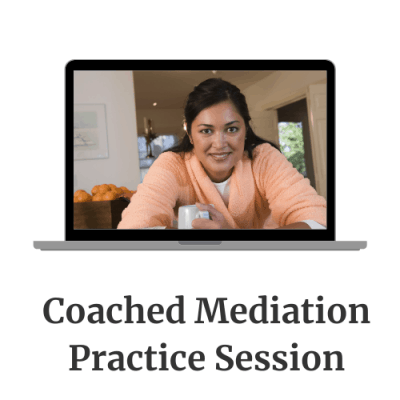 Coached Mediation Practice Session
