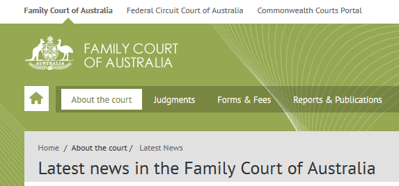 Family Court Website Snip